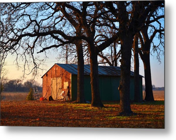 Barn Under Oak Trees Metal Print