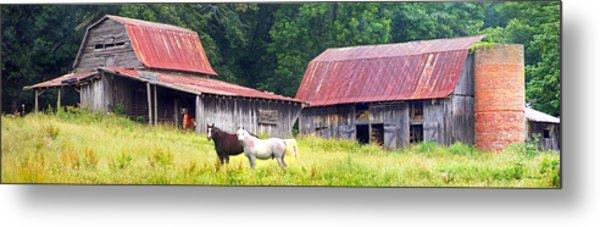 Barns And Horses Near Mills River Nc Metal Print