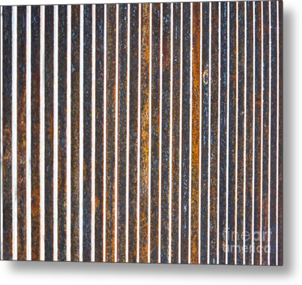 Metal Print featuring the photograph Barred by Kristen Fox