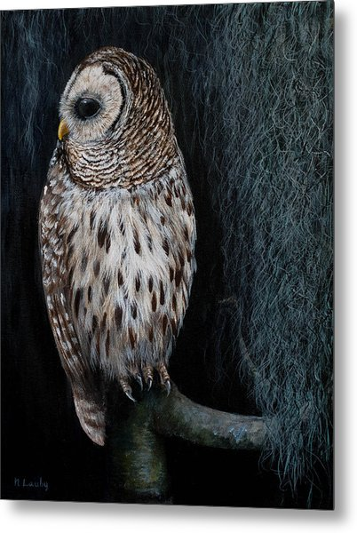 Barred Owl On A Mossy Perch Metal Print