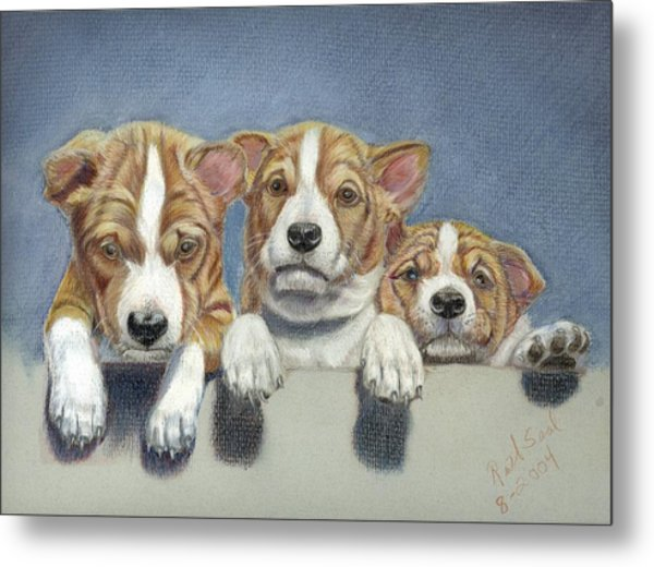 Basenji Puppies Metal Print
