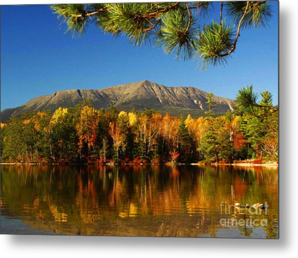 Baxter Fall Reflections  Metal Print