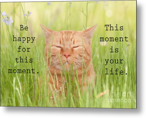 Be Happy For This Moment Metal Print