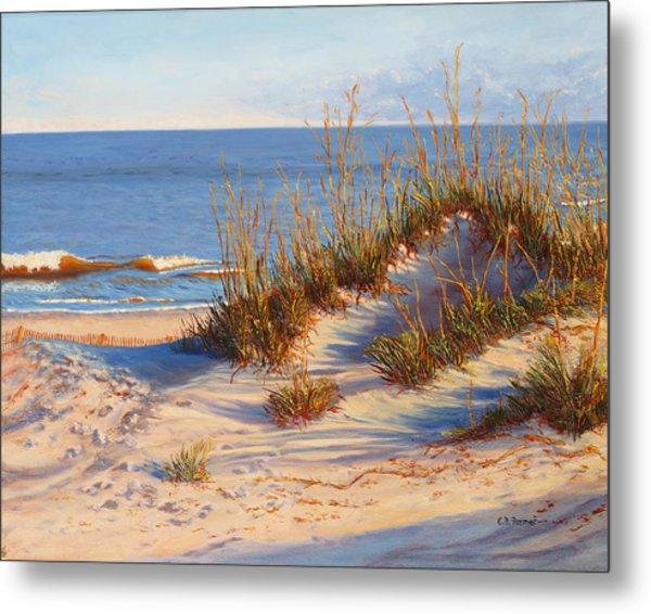 Beach Dune, Atlantic Ocean Beach Metal Print by Elaine Farmer