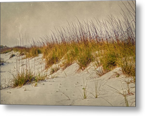 Beach Grass And Sugar Sand Metal Print