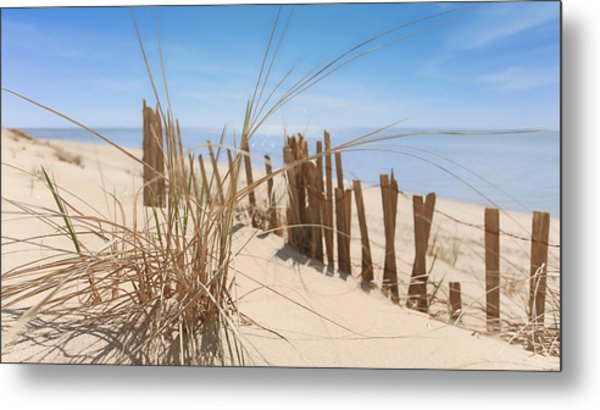 Beach Grass II Metal Print by Dapixara Art