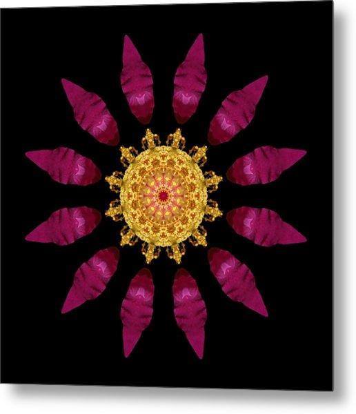 Beach Rose Iv Flower Mandala Metal Print