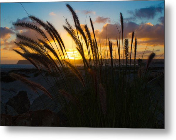 Beach Sunset Metal Print by Marc Bottiglieri