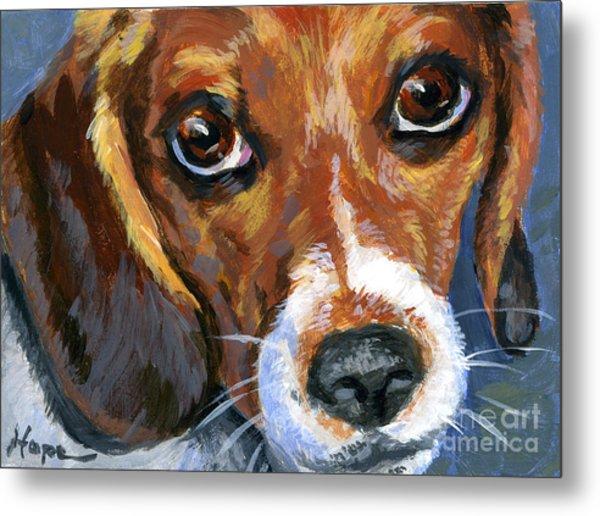 Beagle Metal Print by Hope Lane