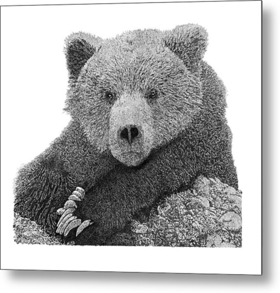 Bear 2 Metal Print