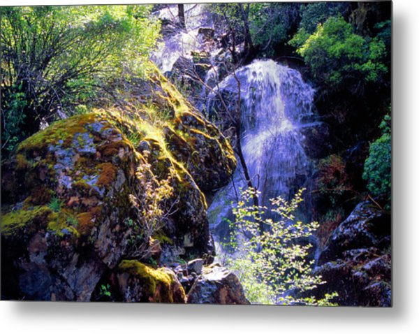 Bear Creak Tributary Bryceburg Junction Near Yosemite Metal Print