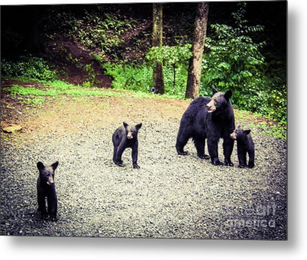 Bear Family Affair Metal Print