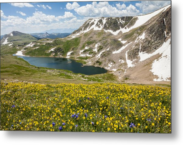 Beartooth Splendor  Metal Print