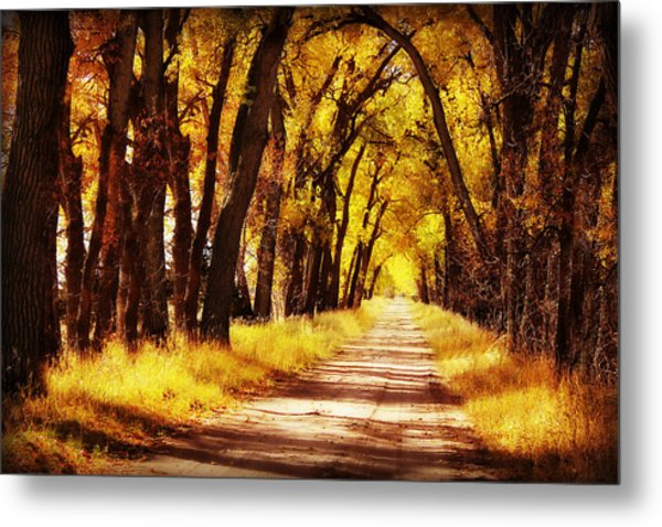 Beautiful Fall Day In Nebraska Metal Print