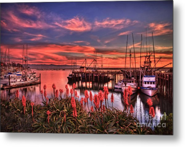 Beautiful Harbor Metal Print