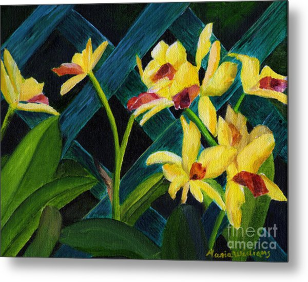 Beautiful Orchids  Metal Print by Maria Williams