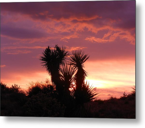 Beautiful Sunset In Arizona Metal Print
