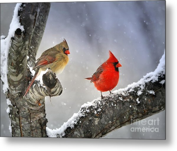 Beautiful Together Metal Print
