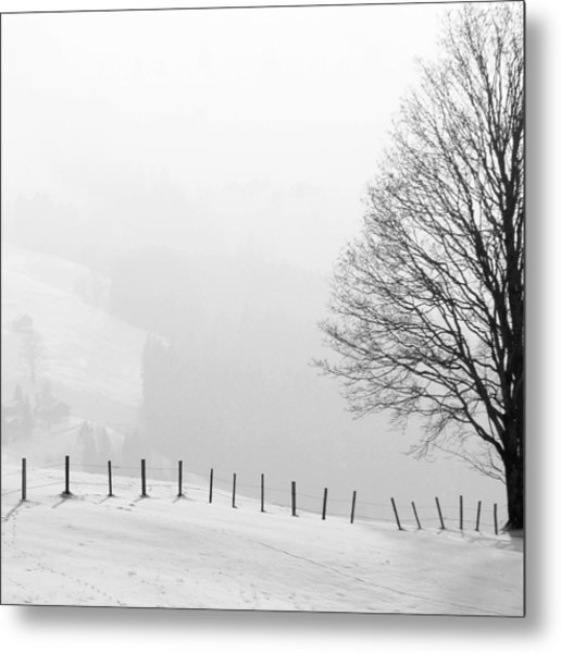 Beautiful Winter Landscape With Tree And Fence Metal Print