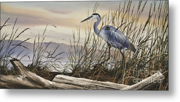 Beauty Along The Shore Metal Print