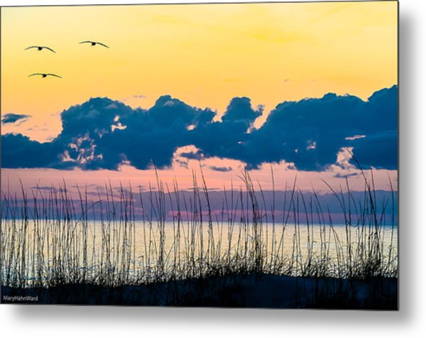 Beauty And The Birds Metal Print