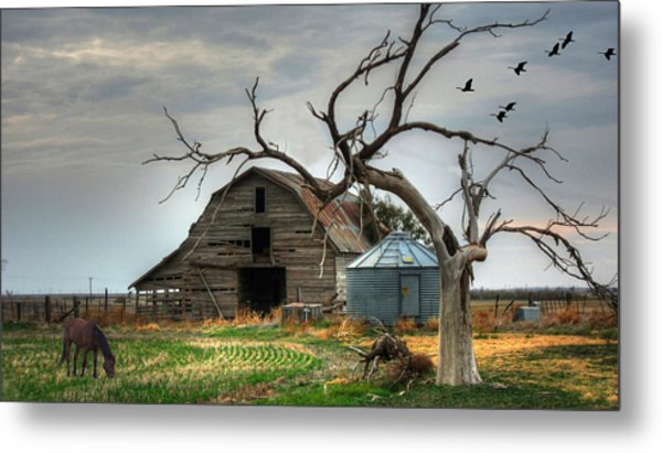 Beauty And The Geese Metal Print