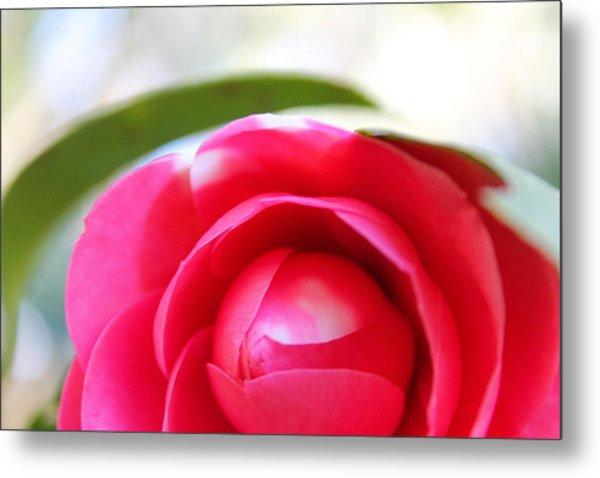 Beauty In Bloom Metal Print