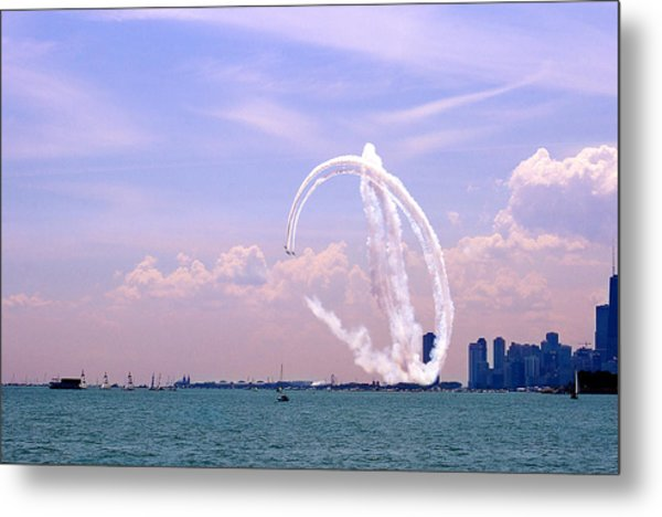 Beauty In The Air Metal Print