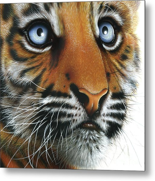 Beauty Of My Mother's Eyes Metal Print