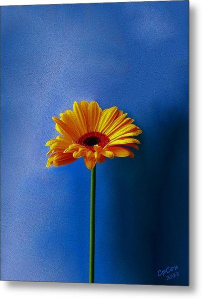 Beauty Out Of The Blue Metal Print