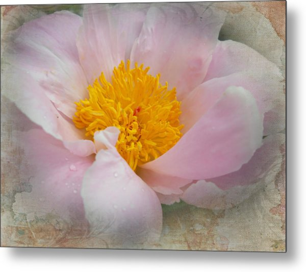 Beauty Woven In Metal Print