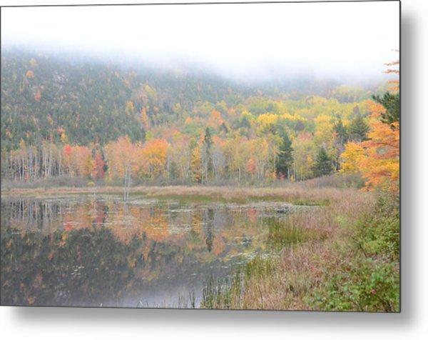 Beaver Lake Maine Metal Print