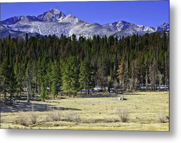 Beaver Meadows Metal Print by Tom Wilbert