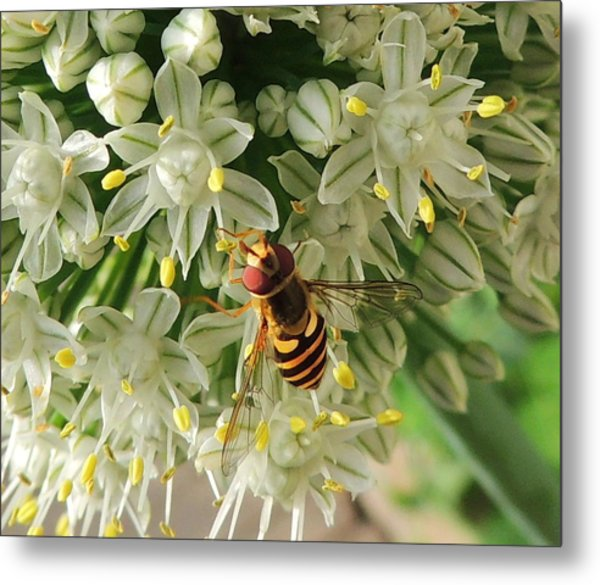 Bee Beautiful Metal Print