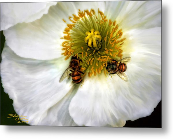 Bees On A Flower Metal Print