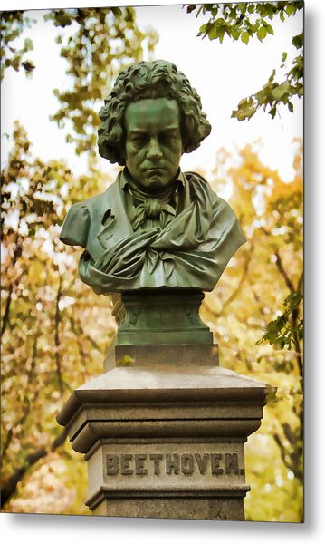 Beethoven In Central Park Metal Print