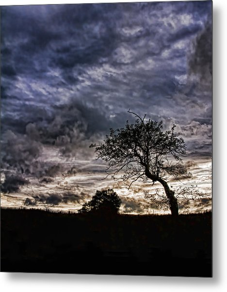 Nova Scotia's Lonely Tree Before The Storm  Metal Print