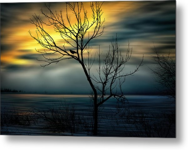 Beginnings Metal Print