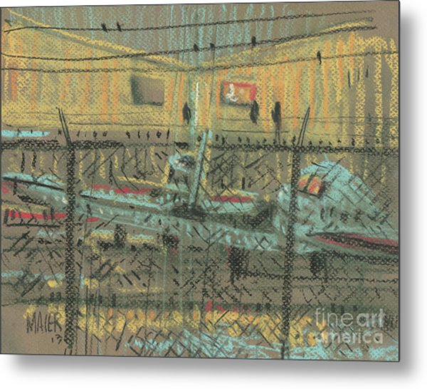 Behind The Fence Metal Print by Donald Maier