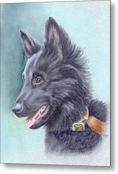 Belgian Sheepdog Puppy Metal Print