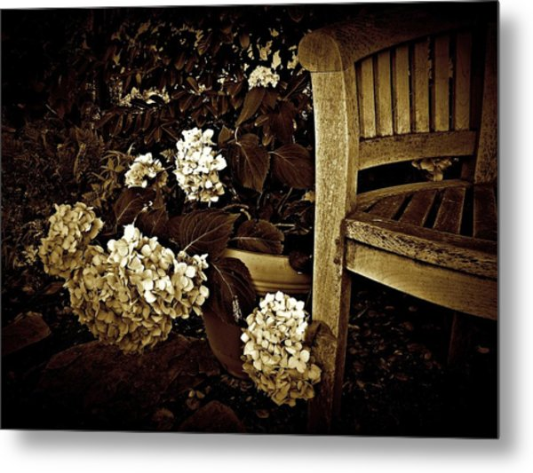Bench With Hydrangeas Metal Print