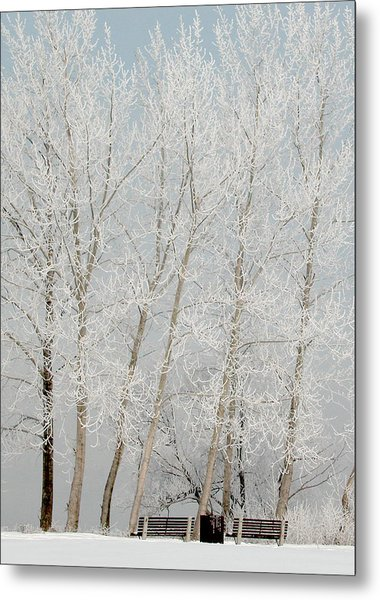 Benches And Hoar Frost Trees Metal Print