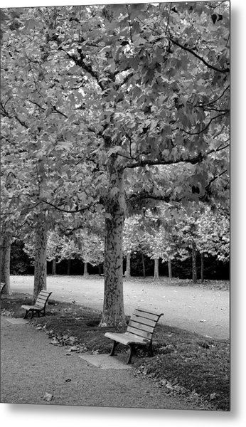 Benches In The Park Metal Print