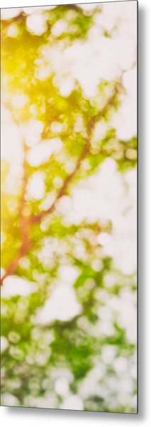Beneath A Tree  14 5194  Diptych  Set 2 Of 2 Metal Print