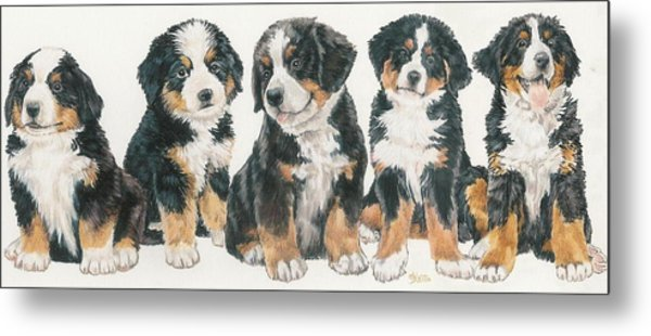 Bernese Mountain Dog Puppies Metal Print