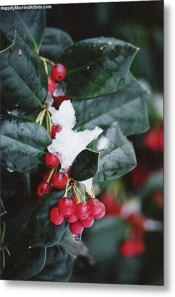Berries In The Snow Metal Print
