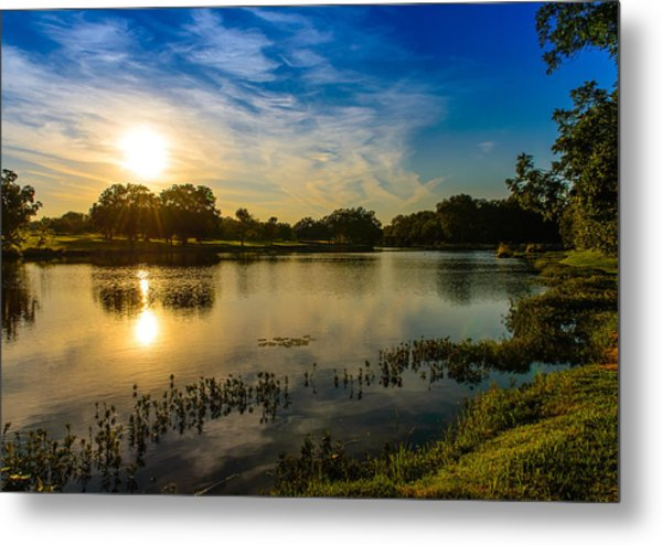 Berry Creek Pond Metal Print