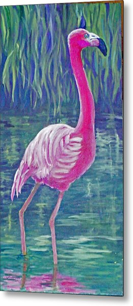 Beta's Flamingo Metal Print