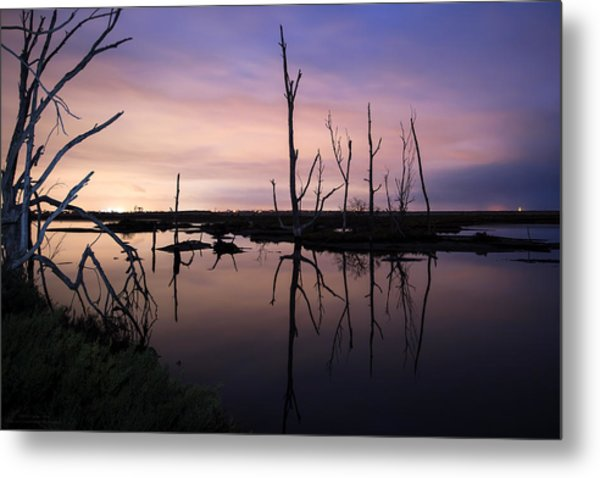 Between Two Worlds By Denise Dube Metal Print