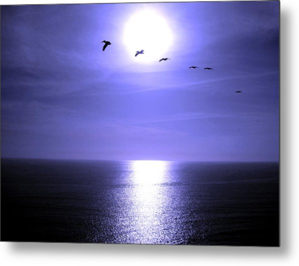 Beyond The Sea Metal Print by Catherine Natalia  Roche